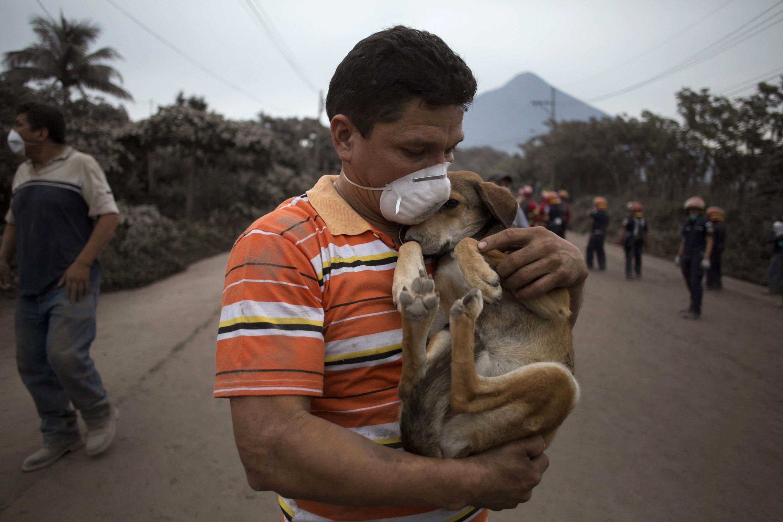 ¿Cómo ayudar ante un desastre ambiental?